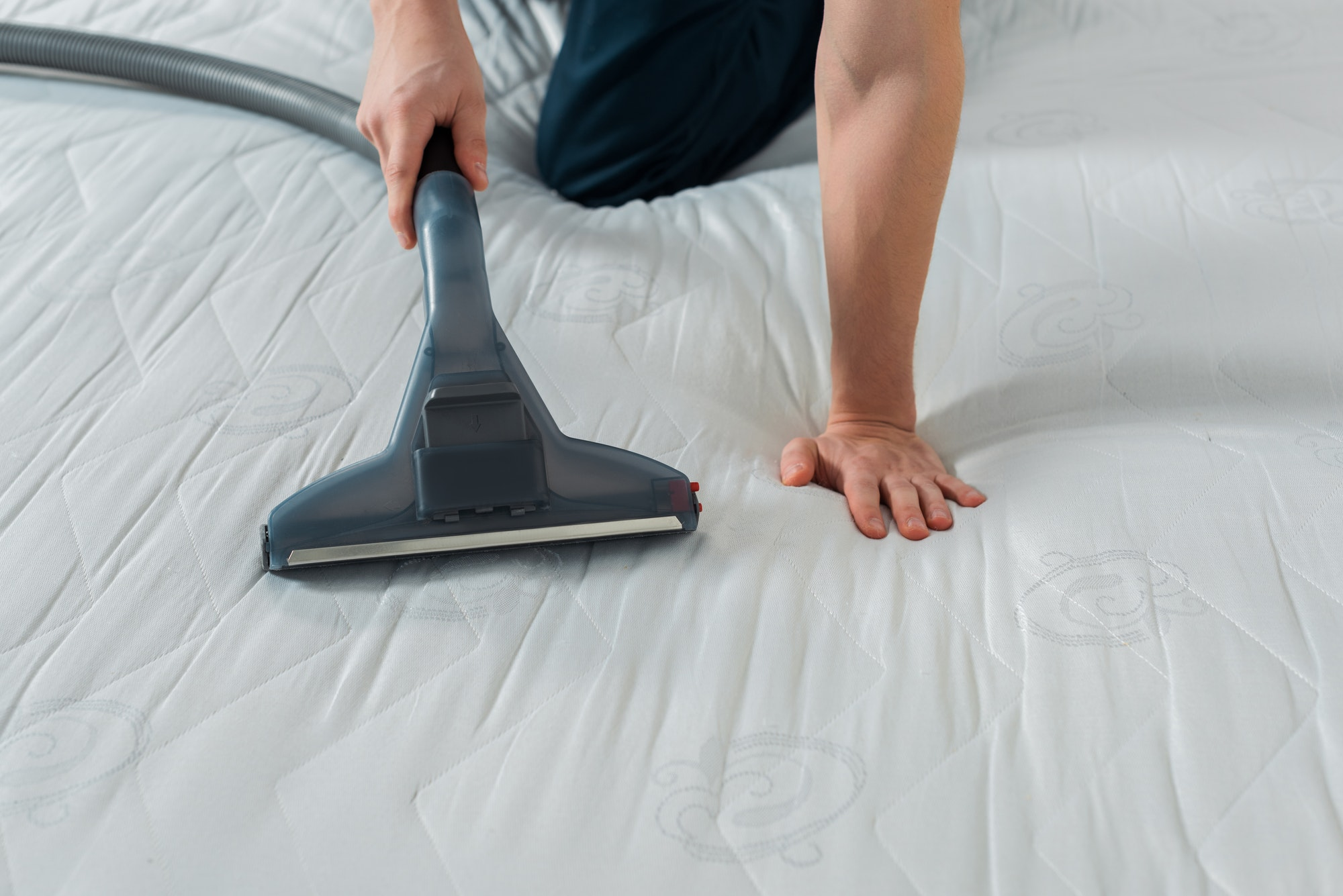 cropped view of cleaner holding vacuum with handle while cleaning mattress